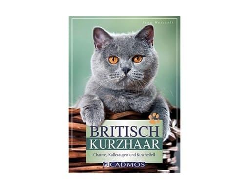 Britisch Kurzhaar Katzenbücher