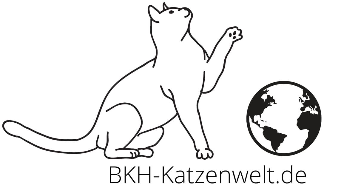 BKH Katzenwelt